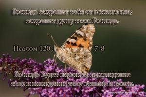 Что значит псалом 120