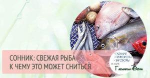 Какое значение имеет по соннику Судьбы, сон про рыбу.