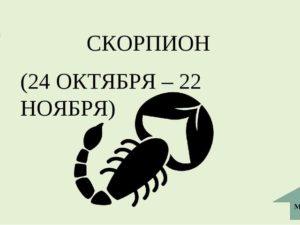 Практичный гороскоп на день 30 октября знак зодиака Скорпион