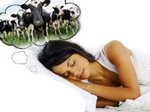 Что говорит сонник о значении сна с коровой