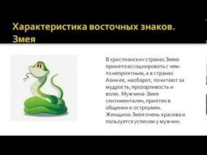 Характеристика года Змеи по восточному календарю