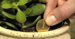 Как привлечь удачу и деньги к себе в дом