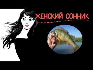 Толкование снов вам приснились живая и мертвая рыба