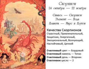 День 11 ноября знак зодиака Скорпион